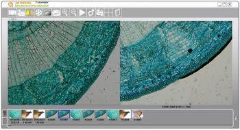Celestron 44422 5MP HD Dijital Mikroskop Görüntüleyici